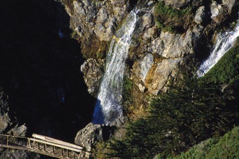 A portion of Ragged Point's Black Swift Falls trail. At 400 feet, Black Swift Falls is the tallest waterfall on the Big Sur coast.